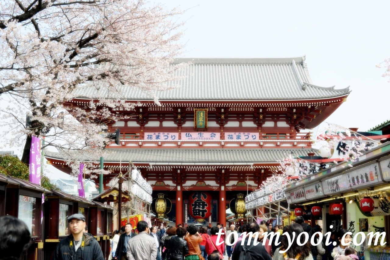15 must visit tokyo attractions travel guide for Visit tokyo