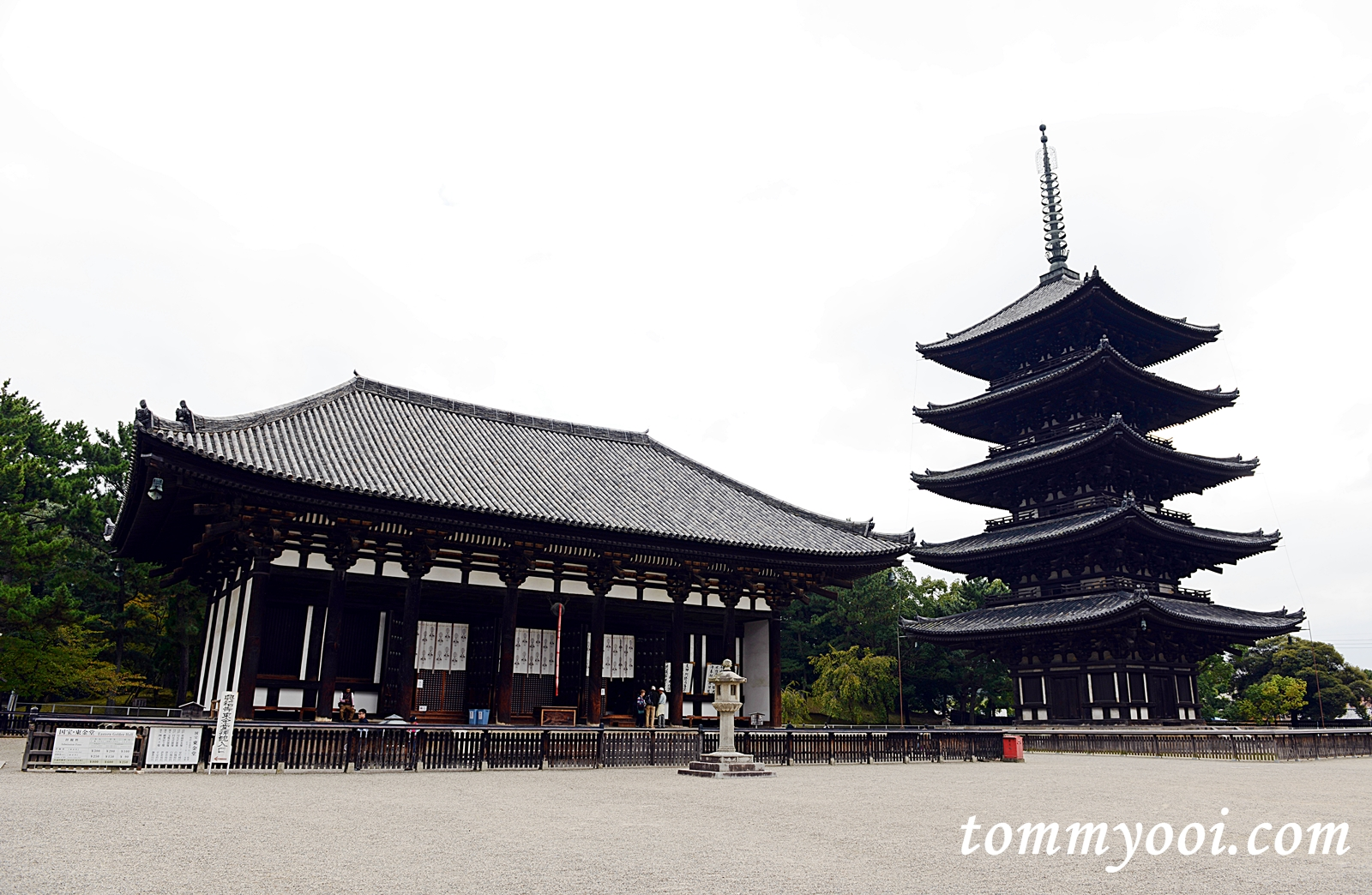 5 Must Visit Nara Attractions & Travel Guide - Tommy Ooi ...